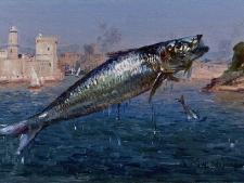 jb-olive-la-sardine-bouchant-le-port